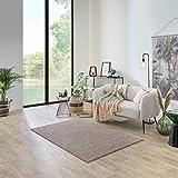 Carpet Studio Ohio Alfombra Salón 115x170cm, Alfombras para Sala, Comedór & Dormitorio, Fácil de Limpiar, Superficie Suave, Pelo Corto - Beige