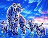 no brand Peinture Au Numéro Numérique Peinture À l'huile des Animaux Tigre DIY Numéros À Colorier Photos Dessin Home Decor Toile Décoration 40X50Cm sans Cadre