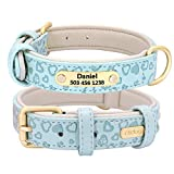 Didog Soft & Comfy Padded Leather Dog <span class='highlight'>Collar</span> <span class='highlight'><span class='highlight'>with</span></span> Embossing Process - Personalized Dog/Cat <span class='highlight'>Collar</span>s Engraved <span class='highlight'>Pet</span> <span class='highlight'>Collar</span> <span class='highlight'><span class='highlight'>with</span></span> Name Plated - Vibrant 5 Color Selection for All Breeds,Haze Blue,S