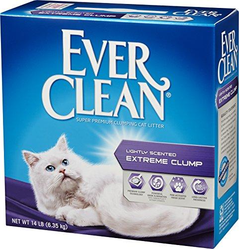 EVERCLEAN(エバークリーン) 小粒芳香タイプ6.35kg