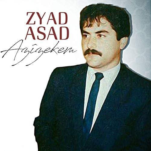 Zyad Asad