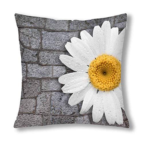 GOSMAO Funda de Almohada Decorativa con Flor de Margarita Blanca con Hojas, Protector de Funda de Almohada Decorativo, 18 x 18 Pulgadas