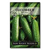 Sow Right Seeds - Beit Alpha Cucumber Seeds for Planting - Non-GMO Heirloom Seeds with Instructions to Plant and Grow a Home Vegetable Garden, Great Gardening Gift (1)