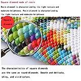 Zoom IMG-2 5d diy pittura diamante kit