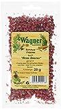 Wagner Green Forest Schinus Früchte /Rosa Beeren, 5er Pack (5 x 20 g)