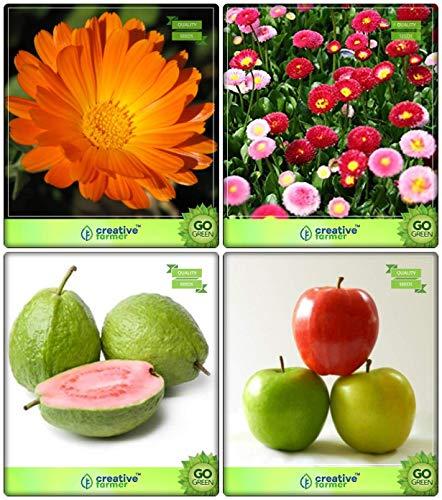 SOW PERFECT Semillas de Plantas de jardín Creativo Farmer Combo de Frutas: limón Guayaba, Manzana, Caléndula, Daisy-Dbl Semillas de Flores Mixtas Terraza jardinería