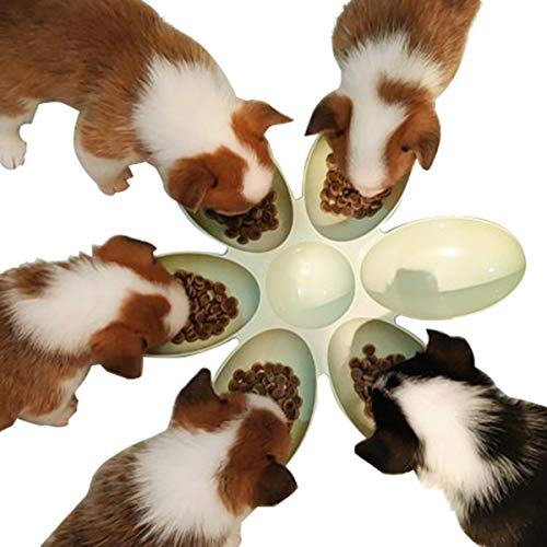 TOYPOPOR 6-Meal Feeder Bowl