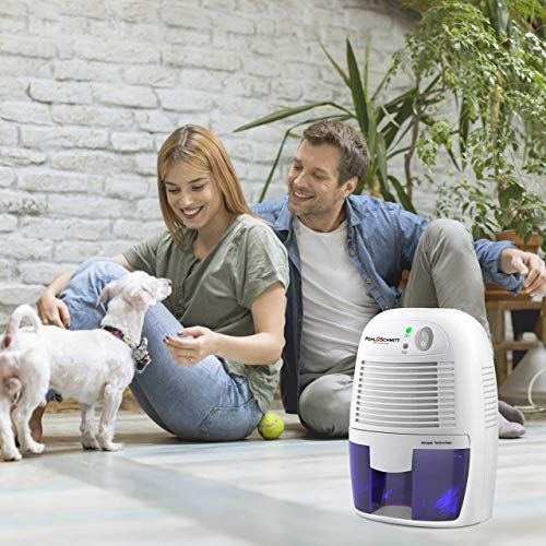 Pohl Schmitt Mini Dehumidifier, 17oz Water Tank, Ultra Quiet - Small Portable Design for Homes, Basements, Bathrooms and Bedrooms - Removes Air Moisture to Prevent Dust Mites, Mold & Mildew