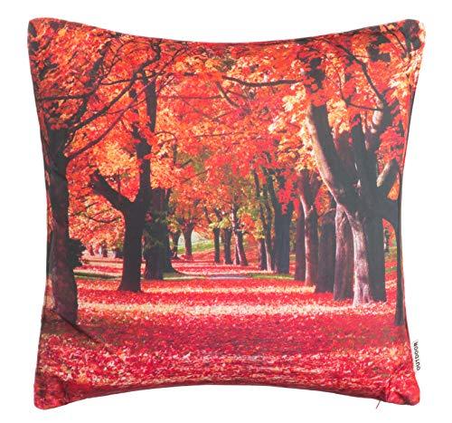 Brandsseller Outdoor Garten Kissen Dekokissen Motivkissen Herbst Schmutz und Wasserabweisend mit Reißverschluss ca. 45 x 45 cm - Motiv 5