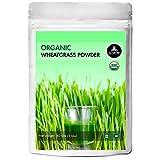 Naturevibe Botanicals Organic Wheatgrass Powder, 5lbs (80 Ounces)