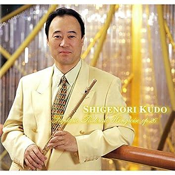 Ketteiban Flute Meikyokushu - Seirei no Odori,Hungary Denen Gensoukyoku-