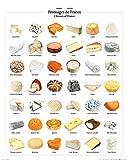 1art1 Käse - Käse Aus Frankreich Poster Kunstdruck 50 x