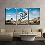 wall26 - 3 Piece Canvas Wall Art - Beautiful Desert Landscape - Modern Home Art Stretched and Framed Ready to Hang - 24'x36'x3 Panels