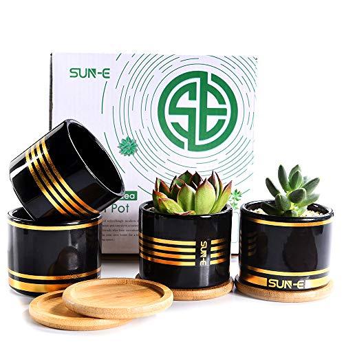 SUN-E Succulent Planter, Planten Pot,Cactus Potten,3.15 Inch Mini Wit/Zwart Keramische Bloempot Gouden Lijn Met Bamboe Lade Met Drainage Gemakkelijk Bijpassende Geschenkverpakking 4 In Set