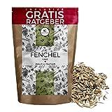 Fenchel Fenchelsamen ganz 250g I Fenchelsaat Gewürzfenchel aus Ägypten inkl. gratis Ratgeber I hochwertiges Gewürz aus Fenchelfrüchten im Nachfüllpack