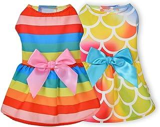 Ruizik Hondenjurk voor kleine hond meisje puppy kleding vrouwelijke prinses tutu-regenboog rok zomer shirt voor Chihuahua ...
