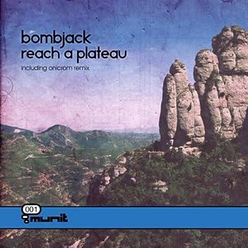 Reach A Plateau