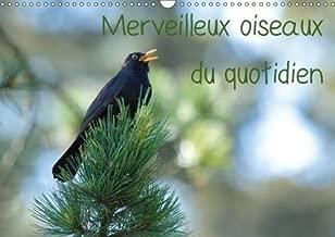 Merveilleux Oiseaux Du Quotidien 2018: Le Quotidien Offre Tant De Merveilles Naturelles Au Travers Des Oiseaux Du Jardin. (Calvendo Animaux) (French Edition)