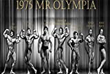 Tomorrow sunny Custom Arnold Schwarzenegger Poster Home Decor 1975 Mr.Olympia Sticker Well Design Franco Columbu Wall paper#1228#