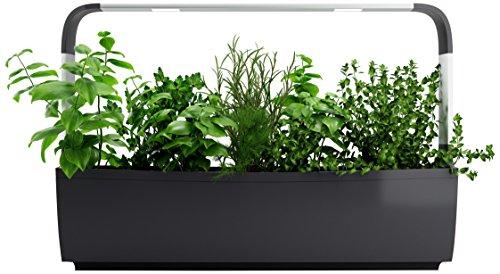 Tregren T12 Potager d'intérieur Connecté 12 plantes, Kit prêt à pousser et Jardinière Autonome...