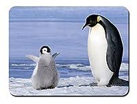 南極のペンギン パターンカスタムの マウスパッド 動物 (22cmx18cm)