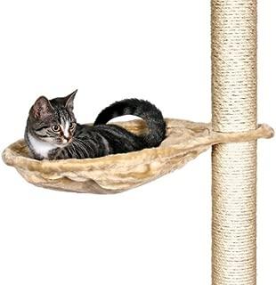 hollow cat tree