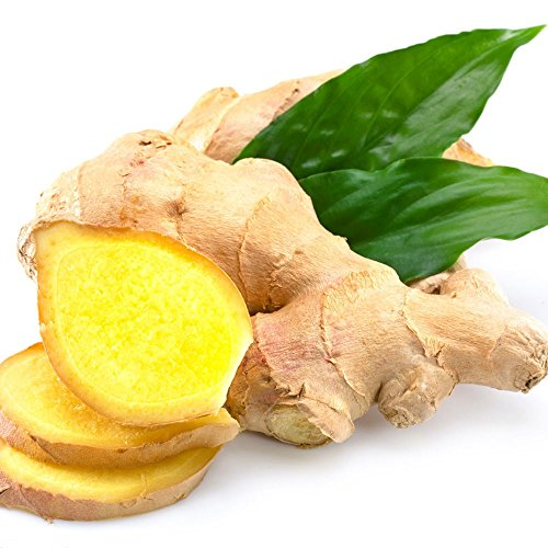 1kg Frischer Ingwer Pamai Pai® frisch Ginger Wurzel Ingwerwurzel