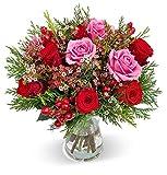 Blumenstrauß Winterzauber, Rot-rosafarbener Rosenstrauß versenden, Schnittblumen, Blumenversand, gratis Blumenvase, 7-Tage-Frischegarantie, versandkostenfrei bestellen