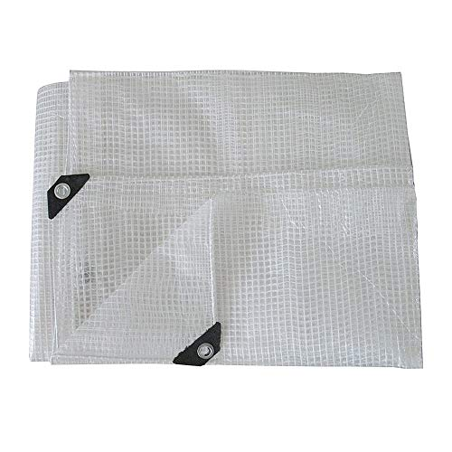 ALGFree Tarpaulin Sheet Strengthened Clear Tarp Sheet Cover Heavy Duty Shed Cloth with Grommets Reinforcing Mesh (Color : Clear, Size : 3x4m)