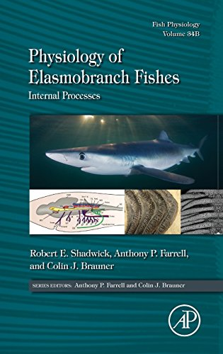 Physiology of Elasmobranch Fishes: Internal Processes (Volume 34B) (Fish Physiology (Volume 34B))