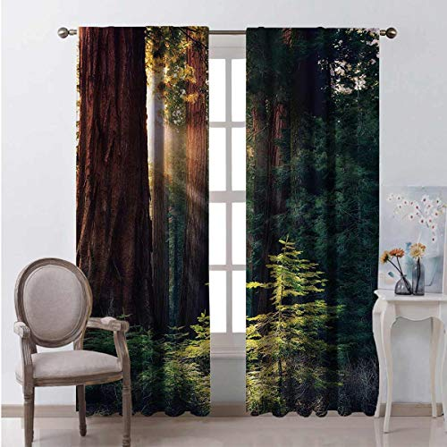 Toopeek National Parks Bedroom rod pocket blackout curtains Morning Sunlight in Wilderness Yosemite Sierra Nevada United States Nature Living room color curtains 2 panels W108 x L96 Inch Green Brown