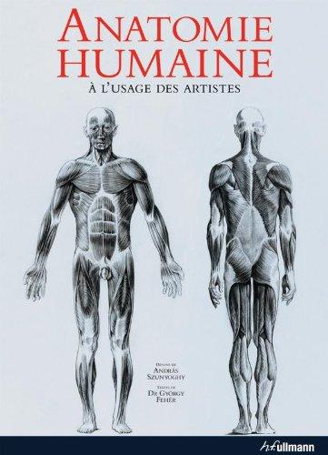 Anatomie Humaine à l'usage des artistes