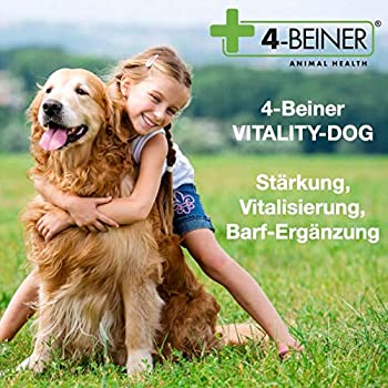 4-BEINER VITALITY-DOG: vitamines pour chiens & minéraux / oligo-éléments, complément alimentaire, également complément idéal pour la méthode d'alimentation BARF