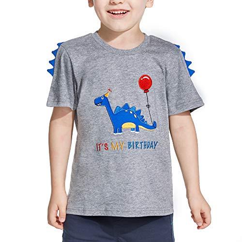 AMZTM Dinosaurio Camiseta de Cumpleaños - Bebé Cumpleaños Fiesta Manga Corta 100% algodón Cuello Redondo T-Rex Bordado Gráfico Gris T Shirt Regalo(Gris, 91-96)