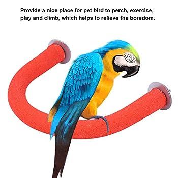 Perchoir en bois rugueux pour cage à oiseaux, perroquets, calopsittes, aras, gris du Gabon, perruches, conures (rouge)
