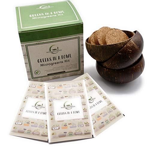 Microgreens Starter-Set | Mikrogrün Anzucht-Set mit 3 Kokosnuss-Schalen | Kokoserde | Microgreens Samen | Dein Indoor Garden Pflanzset Greens in a Bowl