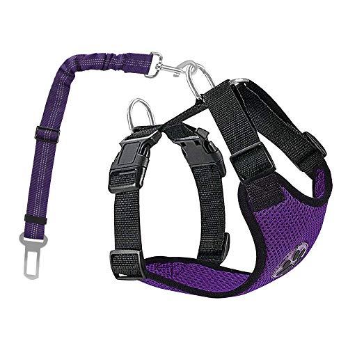 Nasjac Juego de Cinturones de Seguridad para Perros, cinturón de Seguridad para Mascotas con cinturón de Seguridad (M, Púrpura (cinturón de Seguridad del arnés))