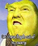 Donald Trump/Shrek Meme Vinyl Decal Bumper Wall Laptop Window Sticker 5'