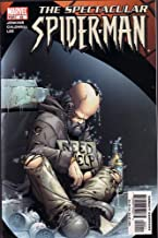 The Spectacular Spider-Man, #22 (Comic Book)