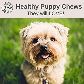 Bâtonnets à mâcher pour chiens – 100% naturels, viande de chevreuil séchée – Un seul ingrédient – 1 paquet = 7 bâtonnets à mâcher délicieux, sains, hypoallergéniques pour votre chien ou chiot (5 Pack)