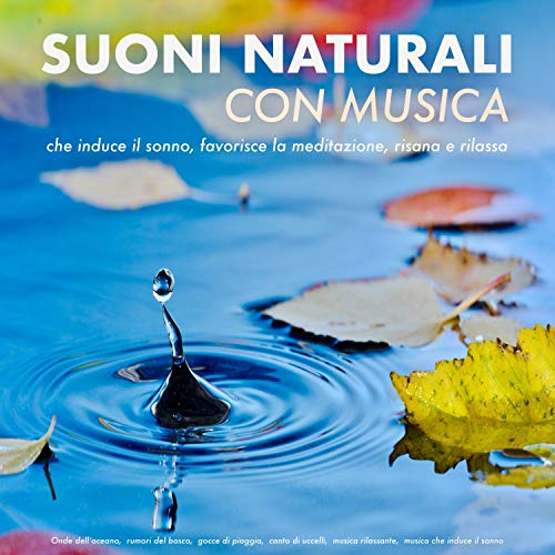 Suoni naturali con musica audiobook cover art