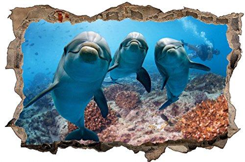 Delfine Meer Delfin Wandtattoo Wandsticker Wandaufkleber D0683 Größe 60 cm x 90 cm