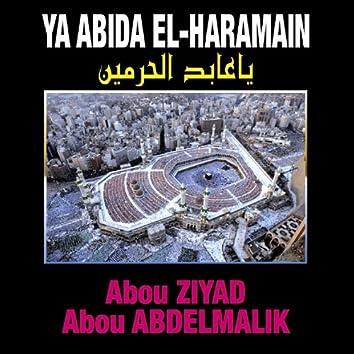 Ya Abida El Haramain - Chants religieux - Inchad - Quran - Coran
