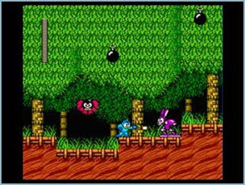 Mega Man Anniversary Collection Game (輸入版:北米)
