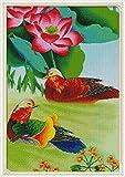 Kit de pintura de diamantes 5D Pato mandarín Pintar con Diamantes Kits,Cuadro de Diamantes Manualidades para Decoración de Pared Regalo Decoración de Pared30x40cm