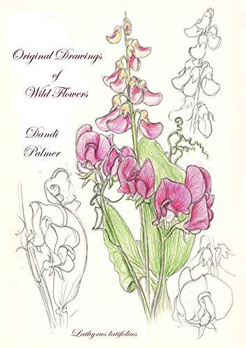 Original Drawings of Wild Flowers (Sketchbook Art) (English Edition)