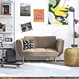 GGAA Sofa Couch Sofa Sofa Bed Novogratz Leyla Loveseat, Multifunctional and Modern Design, Adjustable Armrests to Create a Couch Sleeper -Grey (Color : Grey)