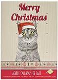 Pet Brands Cat Advent Christmas Calendar