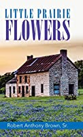 Little Prairie Flowers