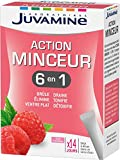 Juvamine 6 Actions Minceur Globale 14 Sticks